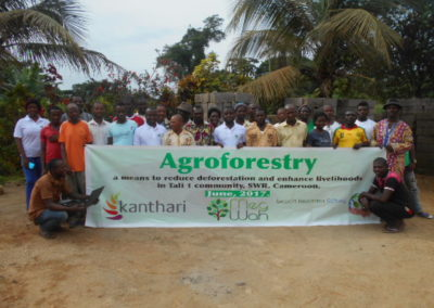 Agroforestry project